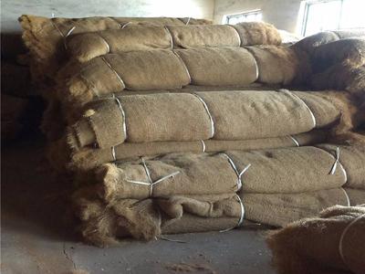 麻椰固土毯